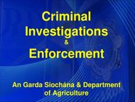 Criminal Investigations Enforcement