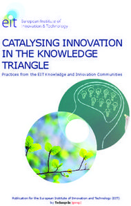 CATALYSING INNOVATION IN THE KNOWLEDGE TRIANGLE