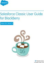 Salesforce Classic User Guide for BlackBerry