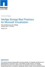 NetApp Storage Best Practices for Microsoft Virtualization