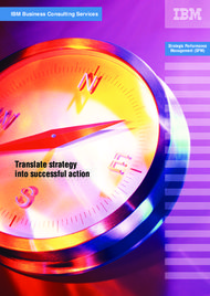 Translate strategy into successful action IBM Business Consulting Services