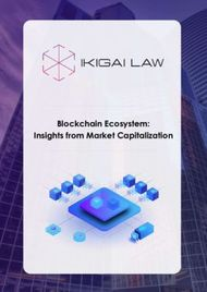 Blockchain Ecosystem: Insights from Market Capitalization