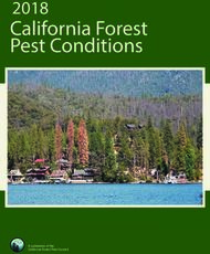 California Forest Pest Conditions 2018