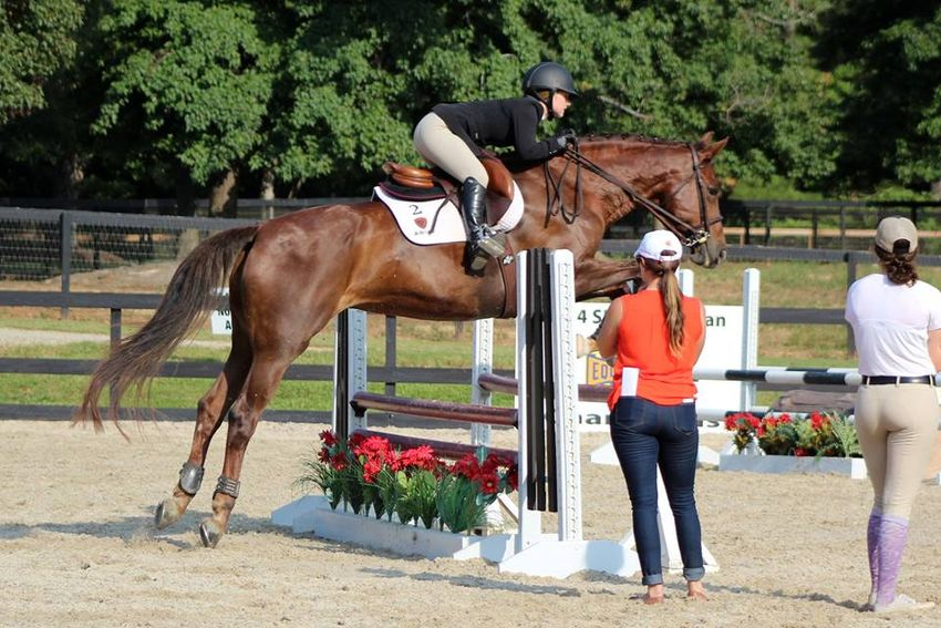 Tiger S Choice Equestrian Camp Clemson University Equine