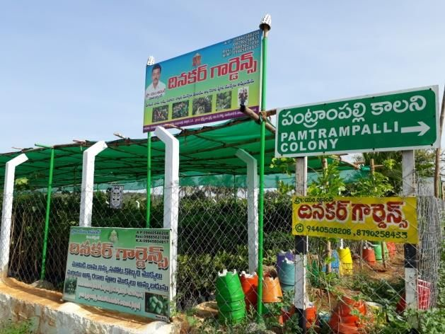 Value chain analysis of mango in Chittoor district, Andhra - MIDH