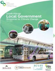 Local Government - South African Response to